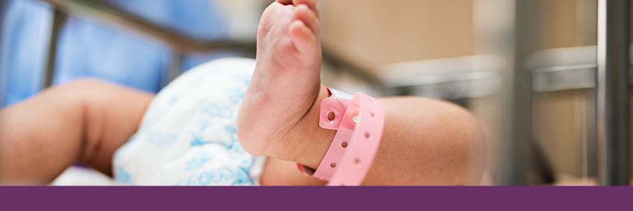 Projecte de llei qualificada de tècniques de reproducció humana assistida